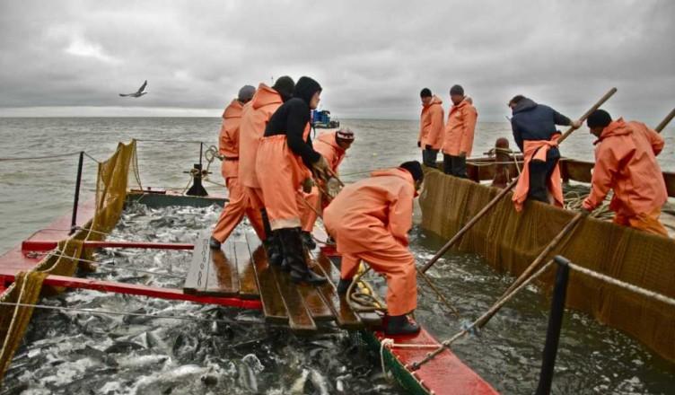 рыбак и его стадии